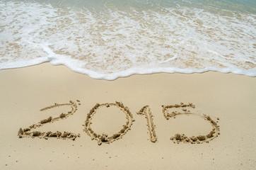 Año nuevo 2015 en la playa 4