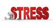 Stress concept