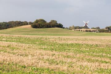 Mühle auf dem Feld