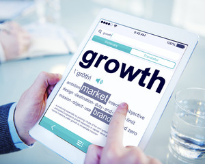Digital Dictionary Growth Market Brand Concepts