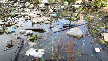 Consequences of urban water pollution
