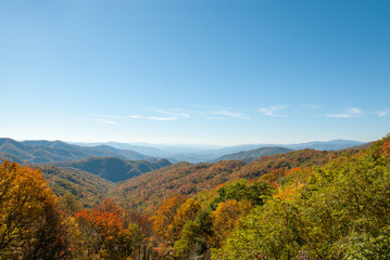 Great Smoky Mountain Autumn Panorama I