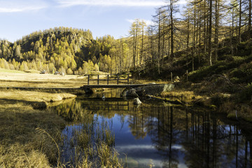 Devero Alp, reflections in the river in autumn season