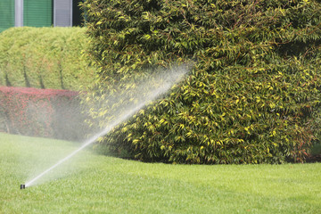 Lawn Sprinkler Spraying Water Over Green Grass in Garden