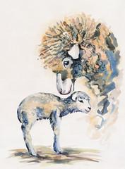 Sheep and lamb. Maternity.