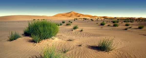 Amazing panoramic view of Sahara desert in Morocco