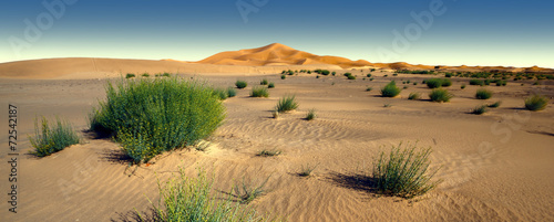 Foto op Plexiglas Zandwoestijn Amazing panoramic view of Sahara desert in Morocco
