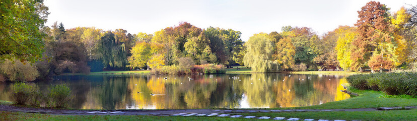 autumnal pond in park
