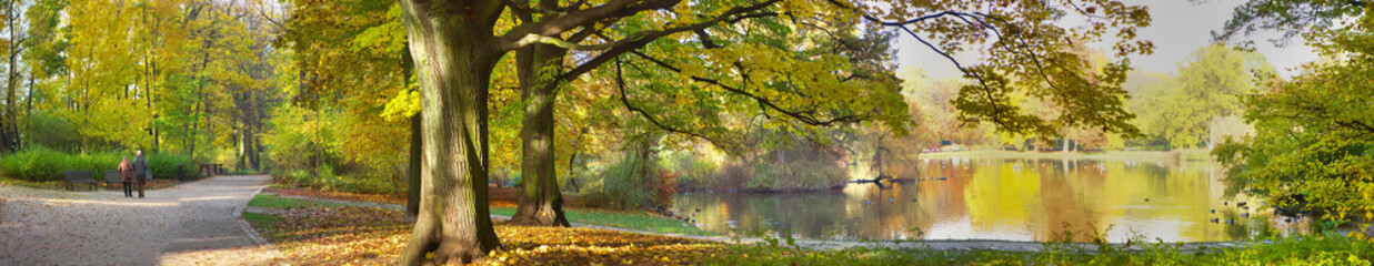 autumnal pond in park