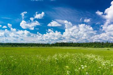 Fresh Landscape Growth Season