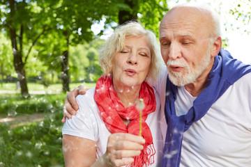 Paar Senioren pustet Pusteblume