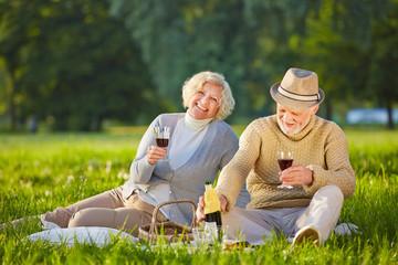 Paar Senioren trinkt Wein beim Picknick
