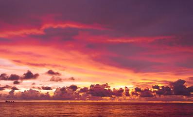 Evening Scene Burning Skies