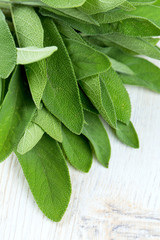 sage leafs on wooden surface