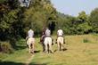 Promenade à cheval - 72547158