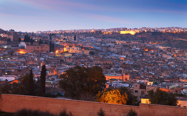 View of the old medina of Fez, Morocco