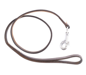 Old leather dog leash composition