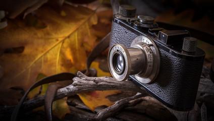 fotografia d'autunno