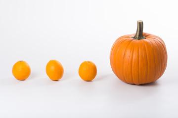 Pumpkin and ducklings