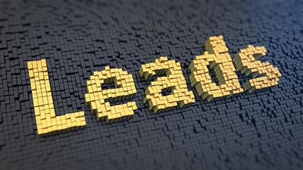 Leads cubics
