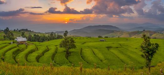Sunset at Ban Pa Pong Piang rice terrace