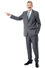 Senior businessperson pointing copy space