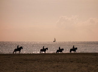 4 Horse riding silhouettes at the beach