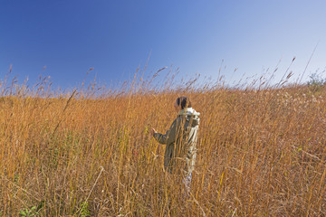 Nature Lover in the Tall Prairie Grass