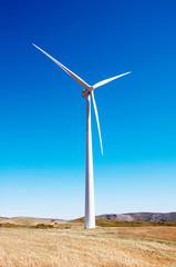 windmills in the field in Spain