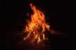 Leinwandbild Motiv Bonfire at night