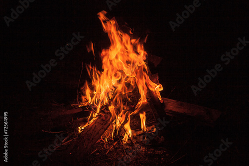 Foto op Canvas Vuur / Vlam Bonfire at night