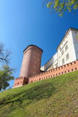 Cracow |  Wawel Castle