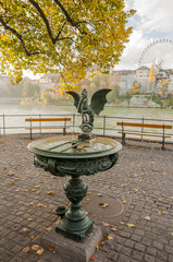 Basel, Altstadt, Basilisken-Brunnen, Rheinufer, Herbst, Schweiz