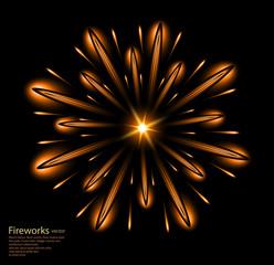 fireworks flower orange vector