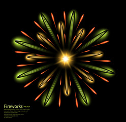 fireworks flower green vector