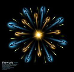 fireworks flower blue vector