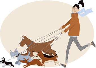 Young woman walking a bunch of dogs