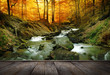 canvas print picture - forest waterfall