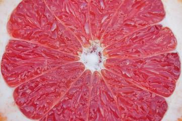 Red grapefruit slice close-up shot