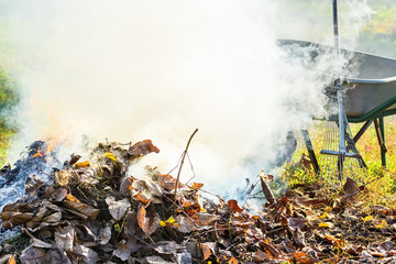 Burning autumn leaves in the garden