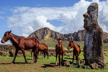 Horse near statues  on the Isla de Pascua. Rapa Nui. Easter