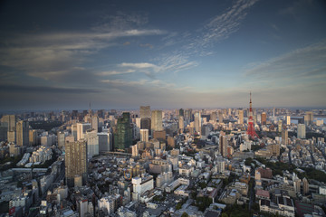 amazing tokyo skyline
