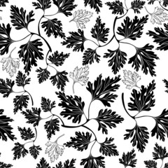 Black and white seamless pattern with  parsley.
