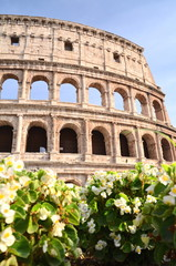 Majestatyczne coloseum w Rzymie na tle niebieskiego nieba, Włoch