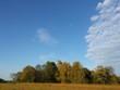 canvas print picture - Herbstlandschaft mit blauem Himmel Wolken und Zugvögeln