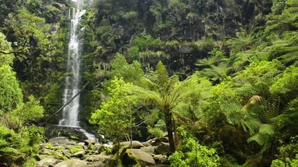Erskine Falls waterfall along the Great Ocean Road