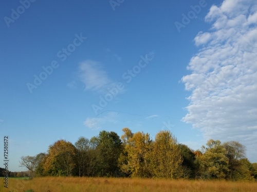 canvas print picture Herbstlandschaft mit blauem Himmel Wolken und Zugvögeln