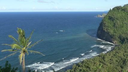Pololu Valley Big Island Hawaii 4K UHD