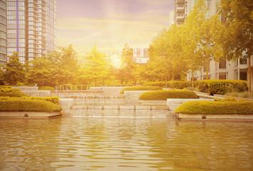 Evening city park view.