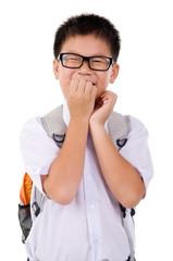 Portrait of asian primary school boy
